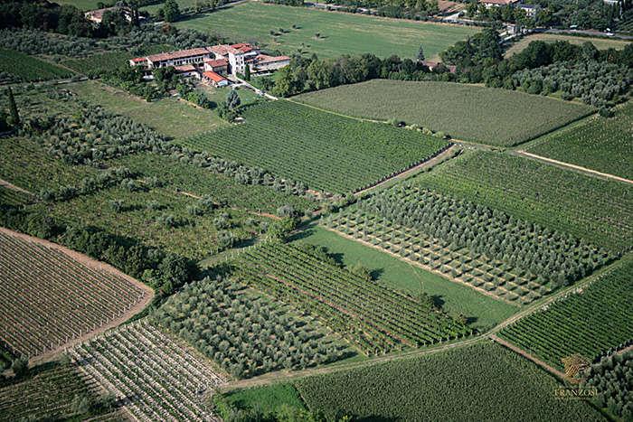 Cantine-Franzosi-Tenuta-Monte-Acuto-OK
