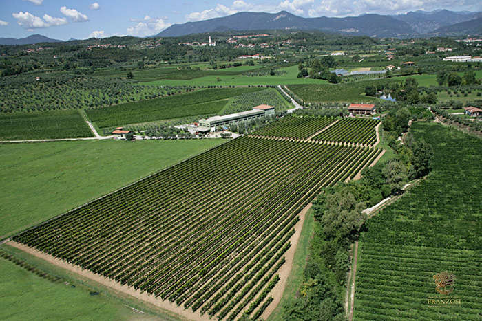 Cantine-Franzosi-Tenuta-Picedo-OK